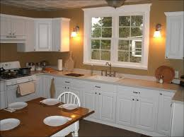 kitchen replace garden window with double hung kitchen window