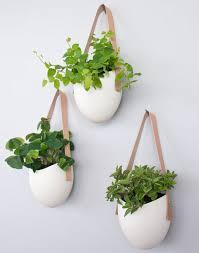 perfect wall planter http blog hgtv com design 2013 10 01 daily