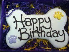 Birthday Cake Dog Meme - happy birthday dog wishes cake images and birthday wallpapers