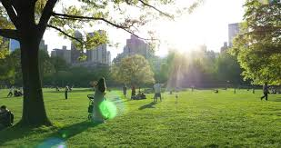 New York nature activities images New york city circa may 2015 people enjoying outdoors resiz