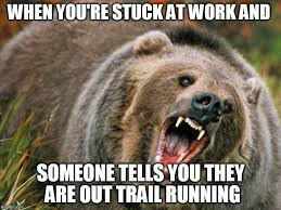 Running Bear Meme - image tagged in pissed off bear imgflip