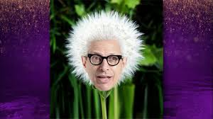 Jeff Goldblum Meme - jeff goldblum reacts to his memes the graham norton show series