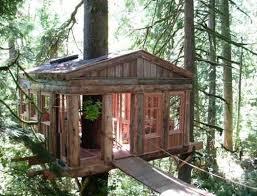 Tree House Backyard by Small Tree House Ideas