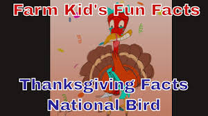 rnraside s farm facts thanksgiving facts national