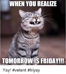 Yay Meme - when you realize tomorrowis friday yay vetent friyay meme