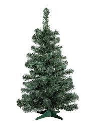 2 foot high balsam pine tabletop tree more forbidden