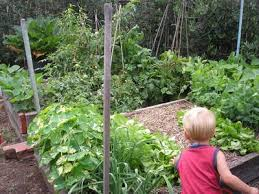 a raised bed vegetable garden for kids u2013 kid friendly home