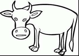 stunning funny cow coloring pages with create your own coloring