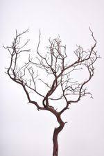 manzanita branches manzanita branches centerpieces table decor ebay