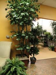 Fake Plants For Home Decor Artificial Trees And Artificial Plants From Artificial Bloom