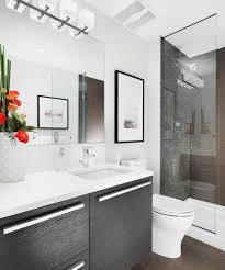 bathroom endearing small bathroom design idea with veneer vanity