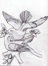 108 best dove images on pinterest diving dove drawing and tatoos