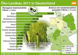 fl che deutschland bio fläche in deutschland leicht zugenommen