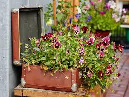 eight lovely memorial garden ideas funeral zone