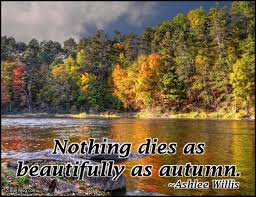 Autumn Meme - autumn fall glitter graphics comments gifs memes and greetings