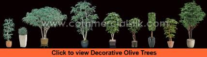 decorative olive tree branch decoration olive tree decor
