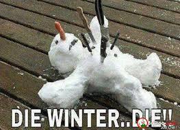 Die Meme - die winter funny meme pics bajiroo com