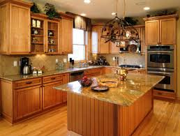 Custom Kitchen Cabinet Ideas by Custom Kitchens Pictures Ideas U2014 Luxury Homes Charming Custom