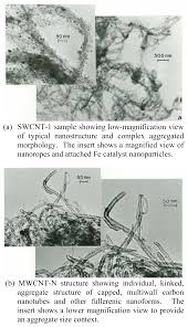 ijerph free full text cytotoxicity assessment of some carbon