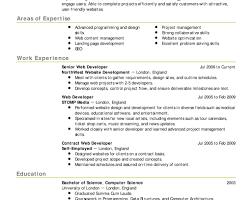 100 web developer skills resume professional dissertation