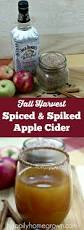 1431 best alcoholic drinks images on pinterest cocktail recipes
