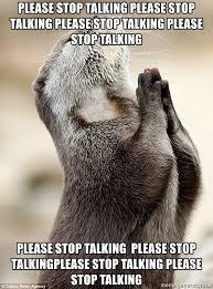 Sea Otter Meme - please stop talking please stop talking please stop talking please