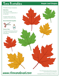 maple leaf templates tim u0027s printables