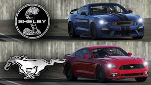 road test 2015 mustang 2016 shelby mustang gt350 vs 2015 ford mustang gt top gear test