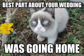 21 Of The Best Grumpy - i m married to grumpy cat itsjerryandharry minecraft server
