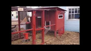 backyard chicken coop tour youtube