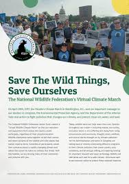 Fuels Backyard Get Togethers Little Riddles Save The Wild Things Save Ourselves The National Wildlife