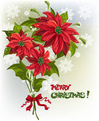 christmas flowers christmas flower vector free vector 215 194 free