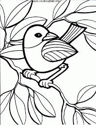 coloring pages of birds 8845