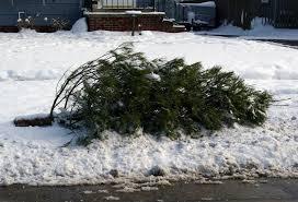 christmas tree waste christmas lights decoration