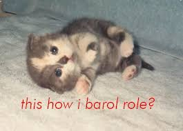 Barrel Roll Meme - gifs memes images and interesting facts found here archive