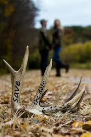 best 20 deer antler crafts ideas on pinterest u2014no signup required