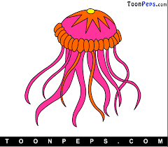 jellyfish drawing for kids
