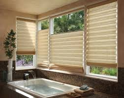 Curtain Ideas For Bathroom Windows Bathroom Remarkable Fiber Shades Bathroom Window Treatments With