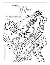 cactus wren coloring page more fun arizona coloring pages at