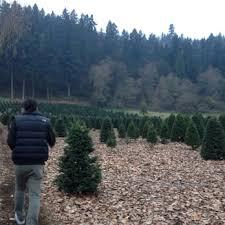 larsen u0027s evergreen christmas tree farm temp closed 11 reviews