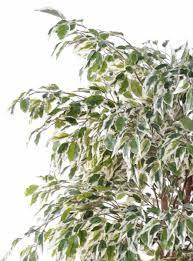 tronc d arbre artificiel tronc d arbre artificiel topfrdesign co