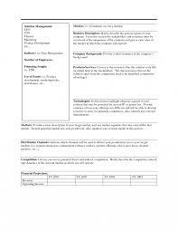 ummary executive summary template example business templates