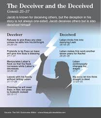 329 best bible niv view bible images on
