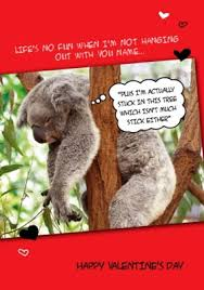 sloth valentines day card valentines koala funky pigeon