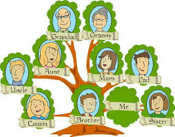 we are all cousins within the grand tree of amazing