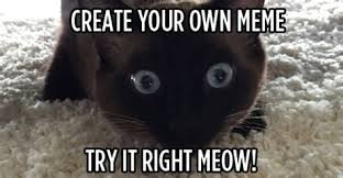 Meme Create Your Own - make your own cat meme 28 images i create my own memes and here