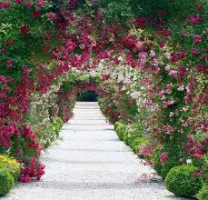 125 best gorgeous gardens and spaces images on pinterest