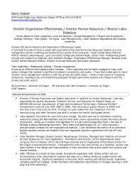 director human resources resume hr director resume