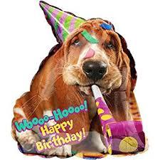 dog birthday party basset hound dog birthday party shape mylar