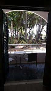 view from room 105 st nicholas beyond the trees picture